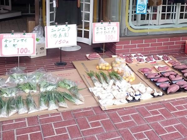 第10回 100円商店街